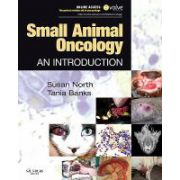 Small Animal Oncology: An Introduction