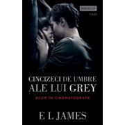 Cincizeci de umbre ale lui Grey - Fifty Shades of Grey