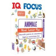 IQ FOCUS - Animale, nivel Junior Plus