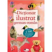 Dictionar ilustrat german-roman