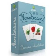 Montessori Vocabular, Lumea plantelor